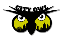 night owl new york event - logo